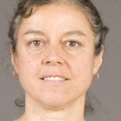 Professor Simone  Hochgreb
